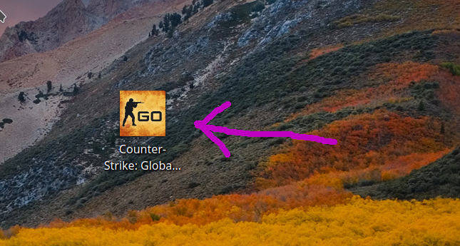 The CS:GO desktop icon to start the game