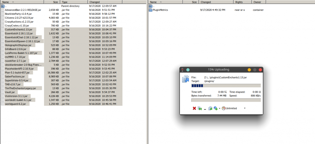 Files are getting transferred to the server host Via SFTP using WinSCP
